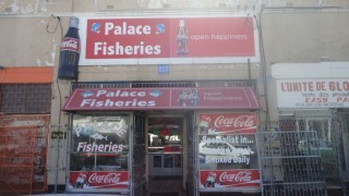 Palace Fisheries